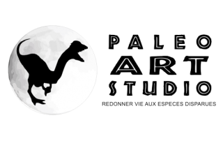 Cedsom client animation paleo